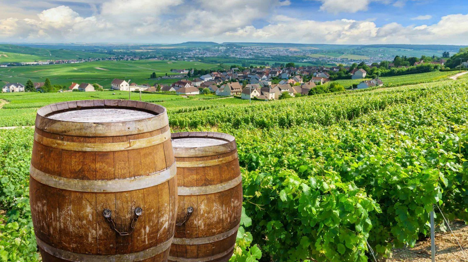 Champagnen-alueen-viiniviljelykset-bargeristeily-1596x896.jpeg