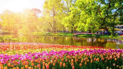 Pääsiäisristeily Reinillä Alankomaista Sveitsiin 29.3.2021