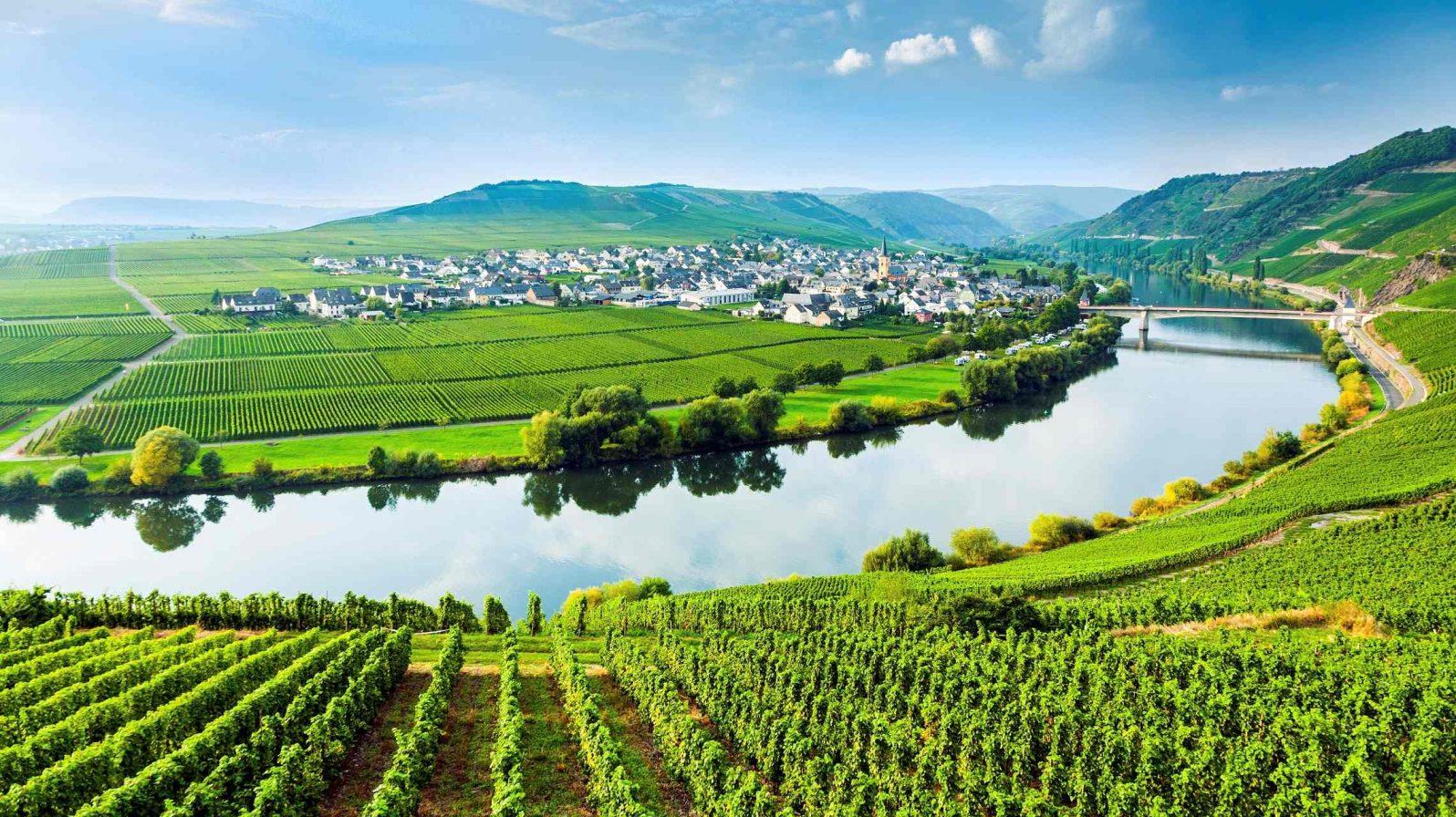 Moselle-viiniviljelyksiä-1596x896.jpg