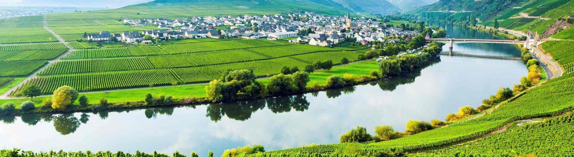 Moselle-viiniviljelyksiä-1920x528.jpg