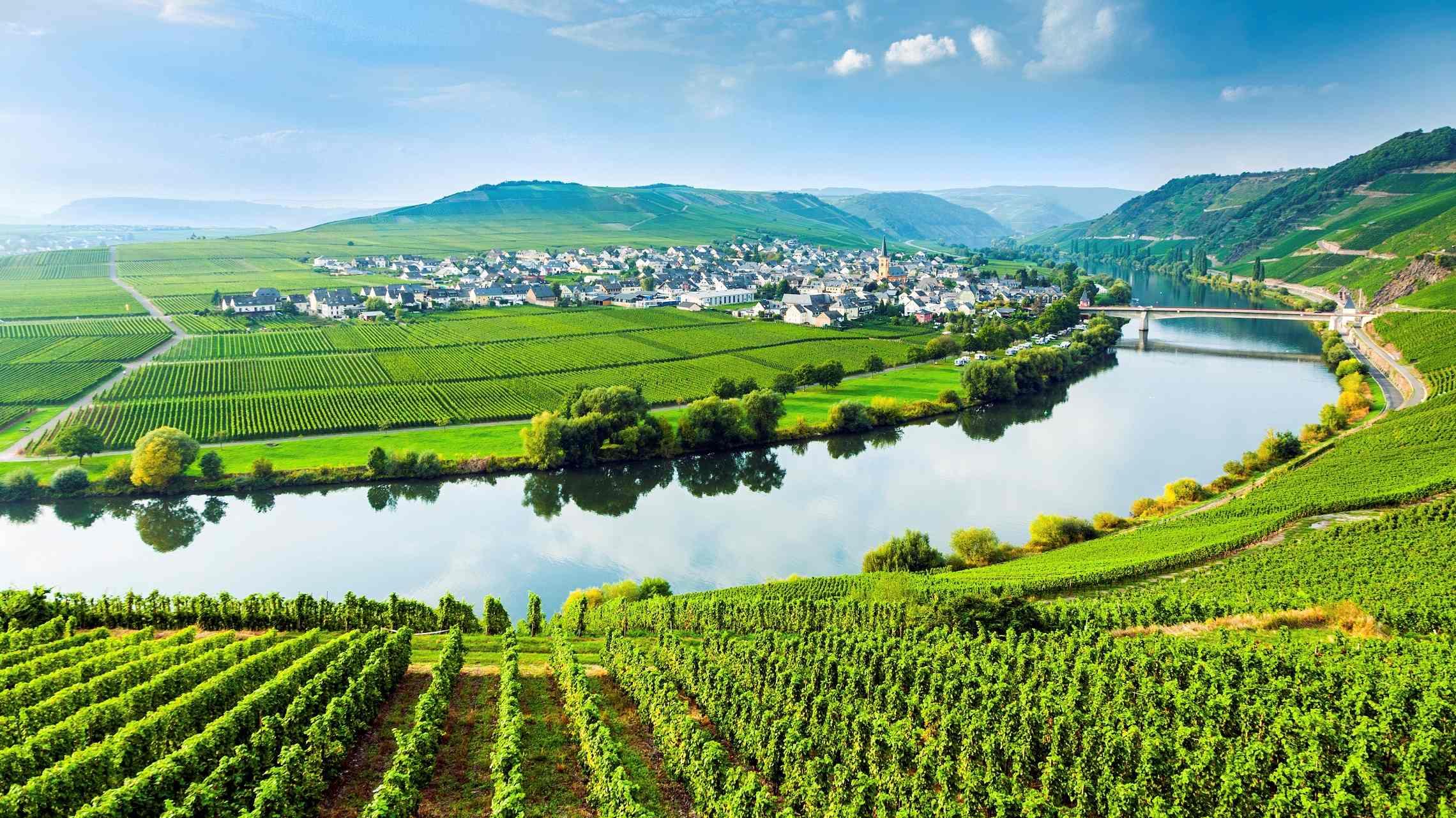 Moselle-viiniviljelyksiä-1920x1080.jpg