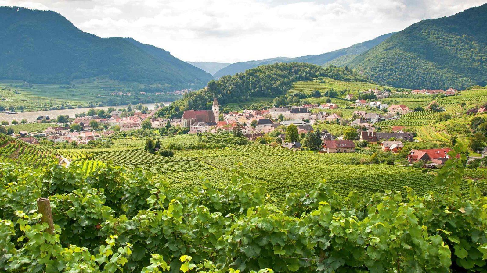 Wachaun viininviljelysmaisema Itävalta Tonava