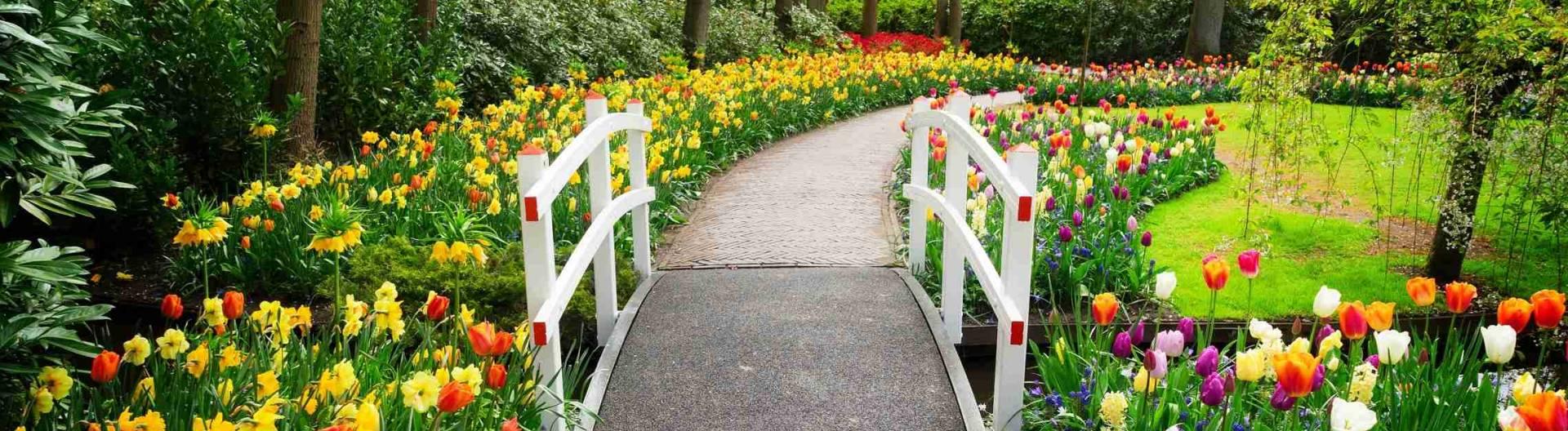 Keukenhofin-puutarha-Alankomaat-1920x528.jpg